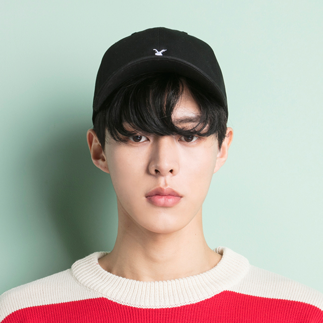 <b><font color=red>★ New product release !! ★</font></b> <br> Aki Classic <BR> Logo ball cap <BR> black